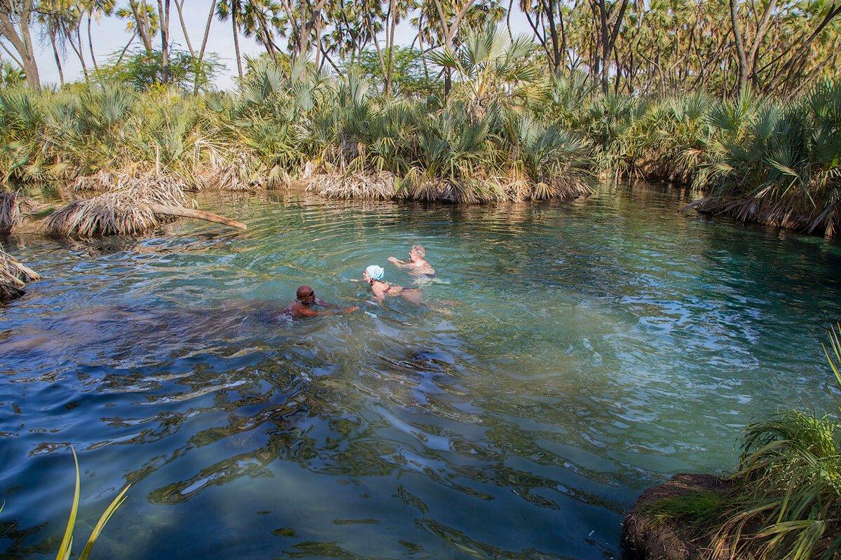 Filwoha-hot-springs-palms-crocodiles-water-swimming-ethiopia-adventuresinethiopia
