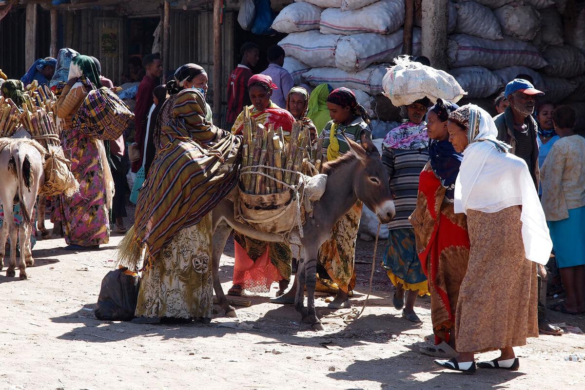 Harara-city-market-donkey-sugar-candle-ethiopia-adventuresinethiopia