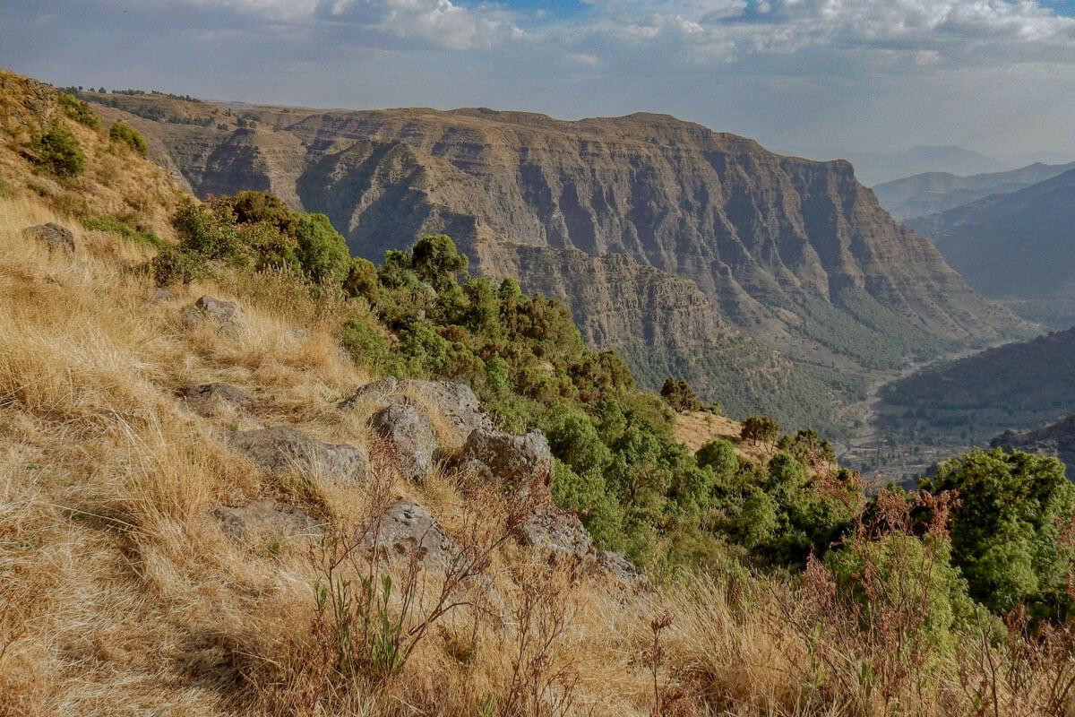 Simien-mountain-national-park-trekking-guide-muls-ethiopia-adventuresinethiopia