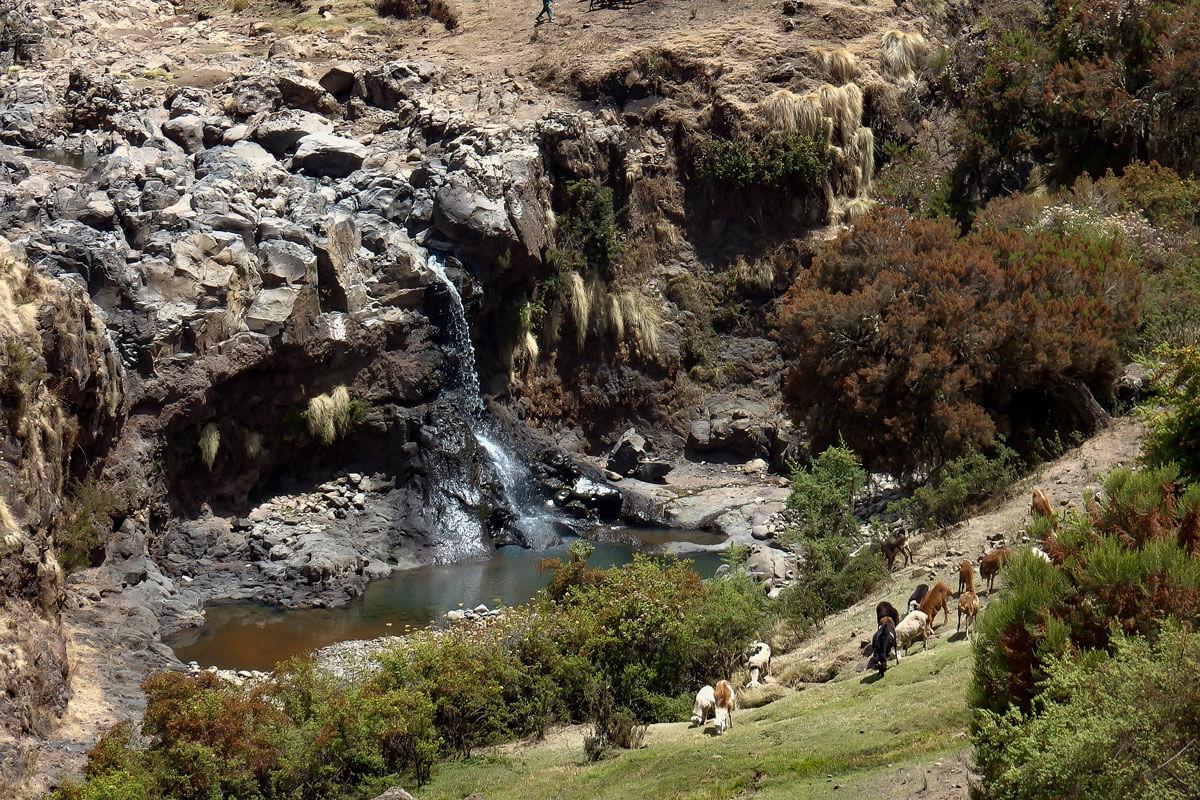 Simien-mountain-national-park-waterfoll-river-treking-ethiopia-adventuresinethiopia