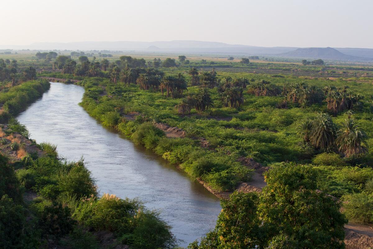 awash-river-afar-region-palms-tree-ethiopia-adventuresinethiopia