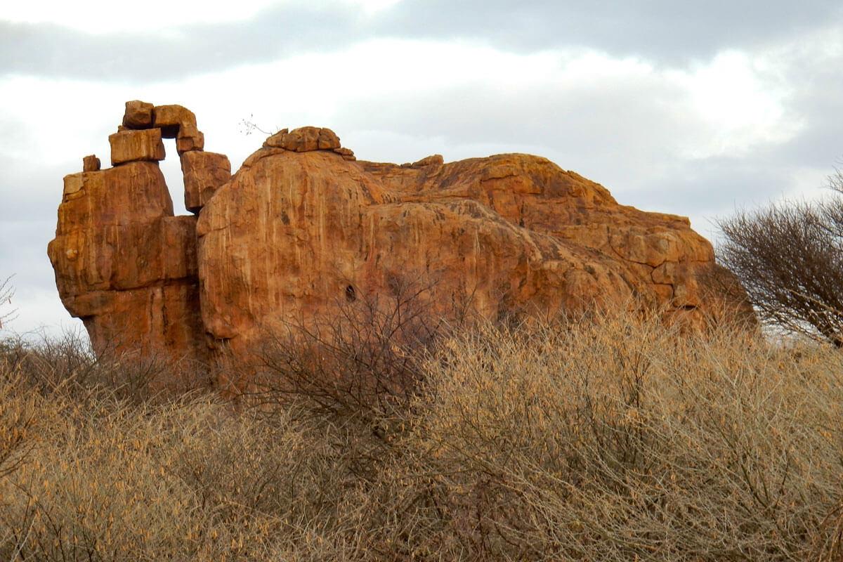 elephant-rock-yebello-bushes-ethiopia-adventuresinethiopia