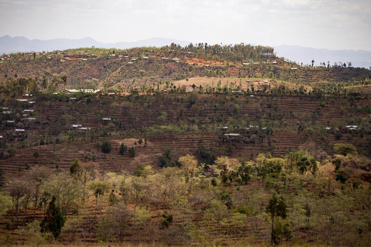 konso-terases-agriculture-tribe-ethiopia-adventuresinethiopia