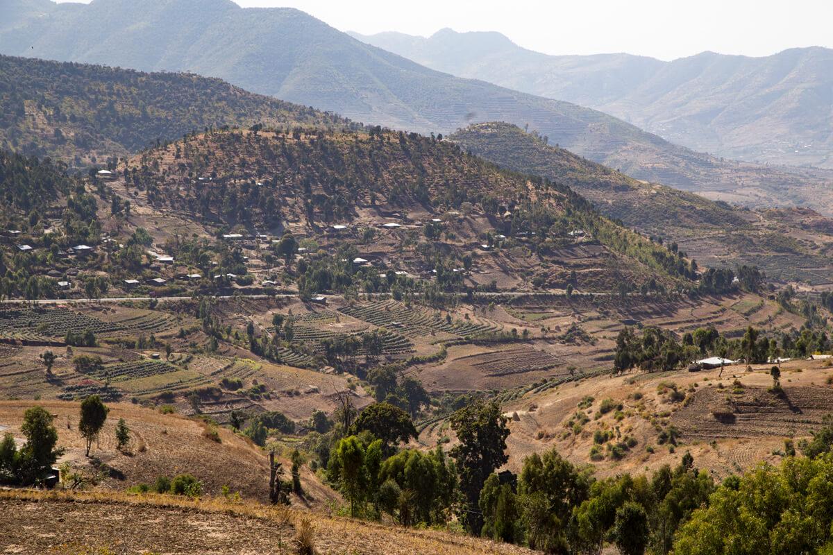 mountains-vilage-eucaliptus-landscape-ethiopia-treking-adventuresinethiopia