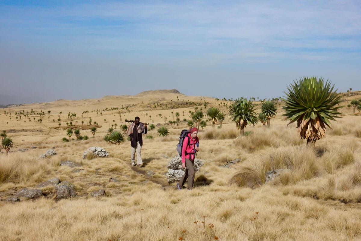 simien-mountain-treking-walking-guide-scout-ethiopia-adventuresinethiopia