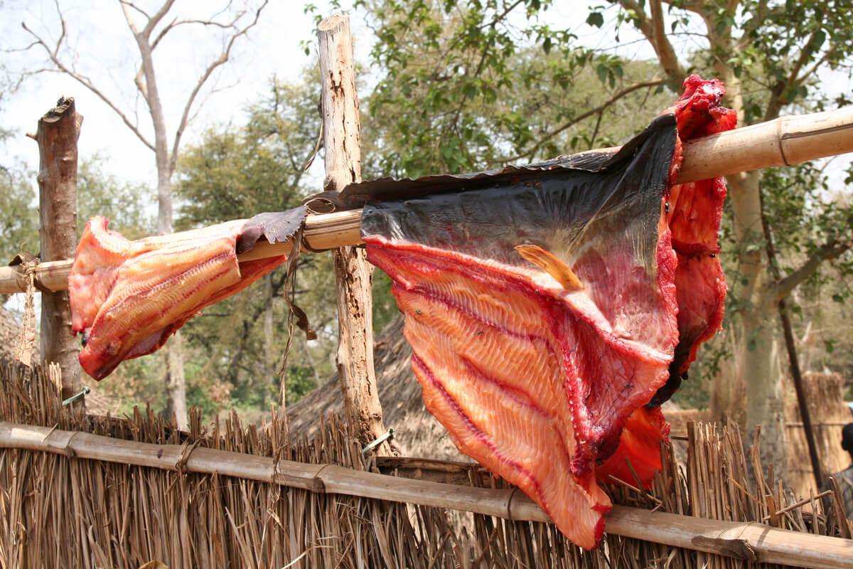 sun-dried-fish-food-tribes-village-yard-ethiopia-adventuresinethiopia-