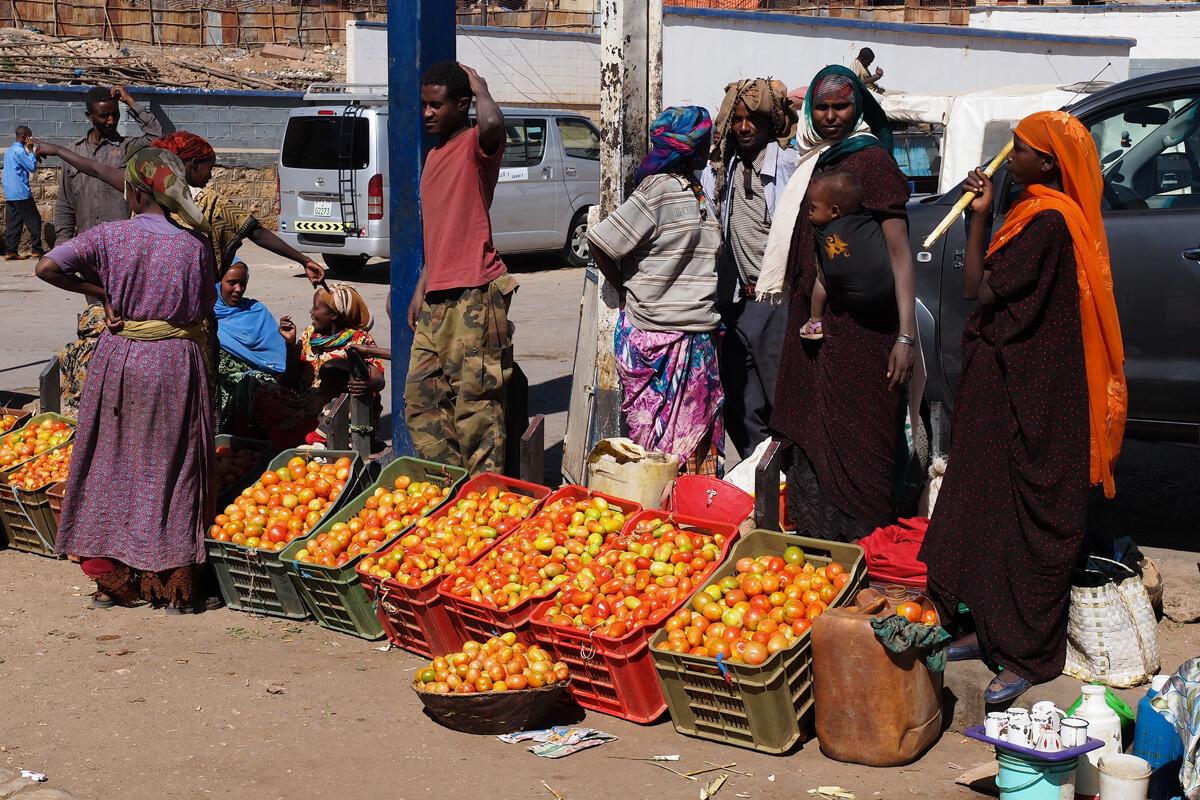 Harara-city-market-tomato-women-ethiopia-adventuresinethiopia