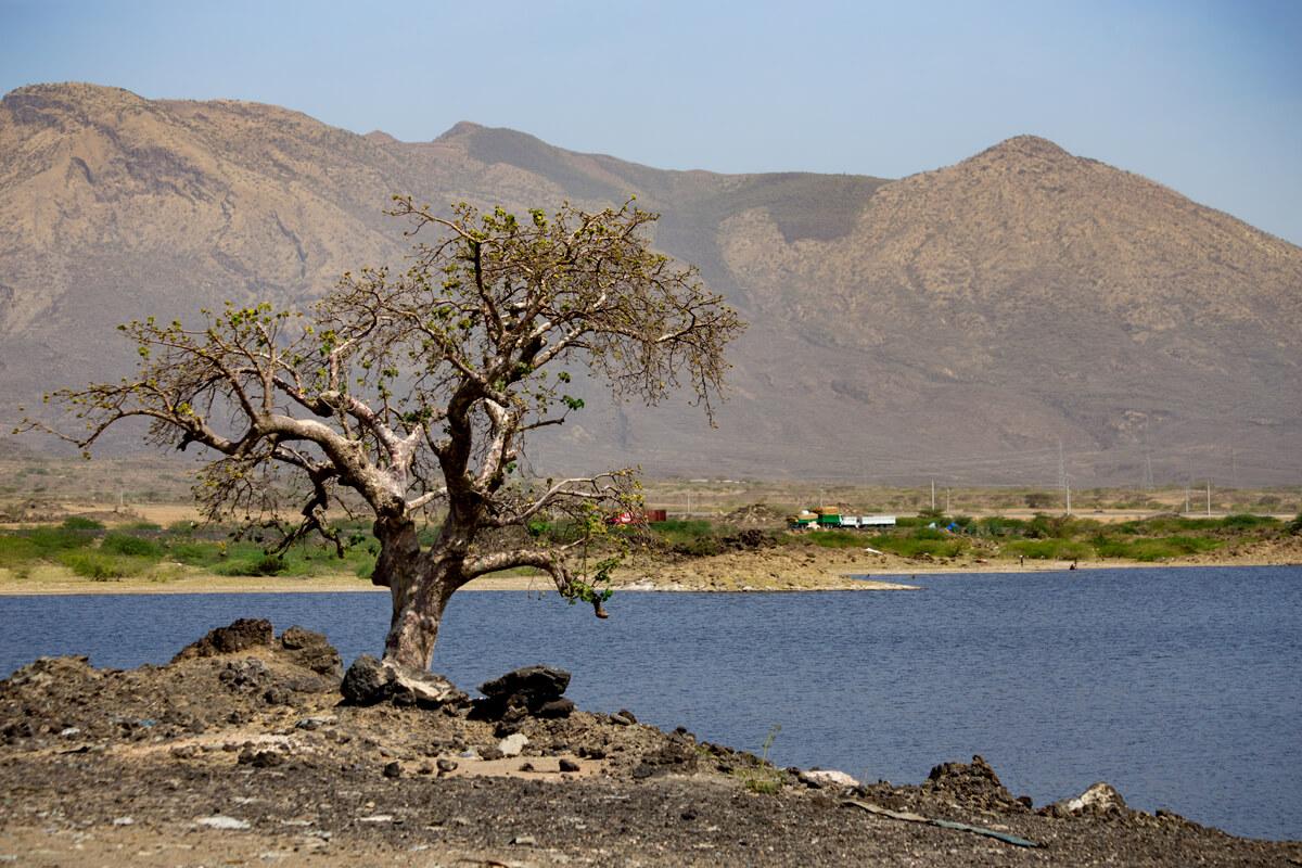 fentale-volcano-mount-metahara-city-beseka-lake-fickus-tree-landscape-ethiopia-adventuresinethiopia