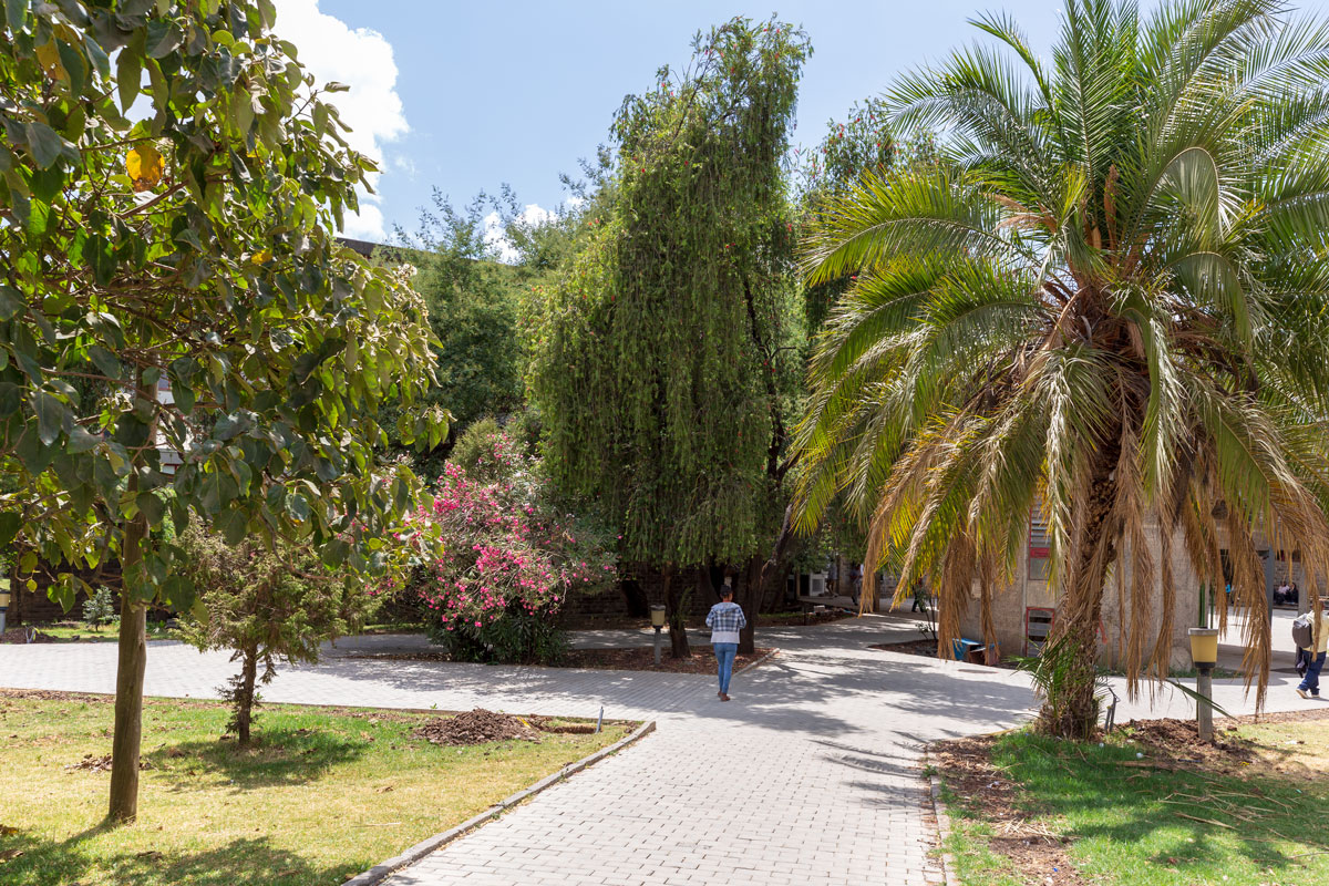 Addis Ababa_university_students_learning_education_park_museum_city tour_Africa_traveling_adventures in ethiopia