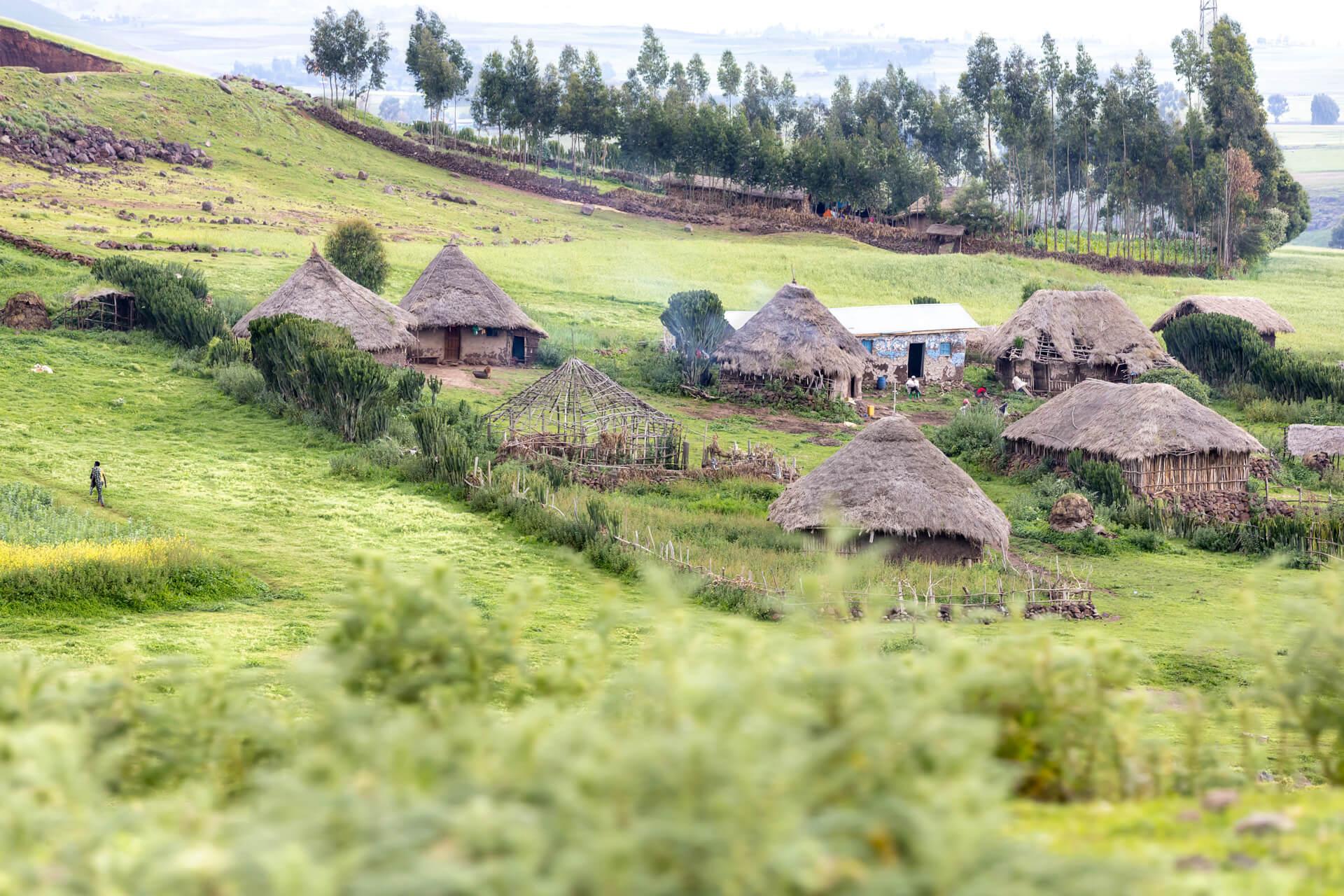 Landscape Ethiopia bale mountains