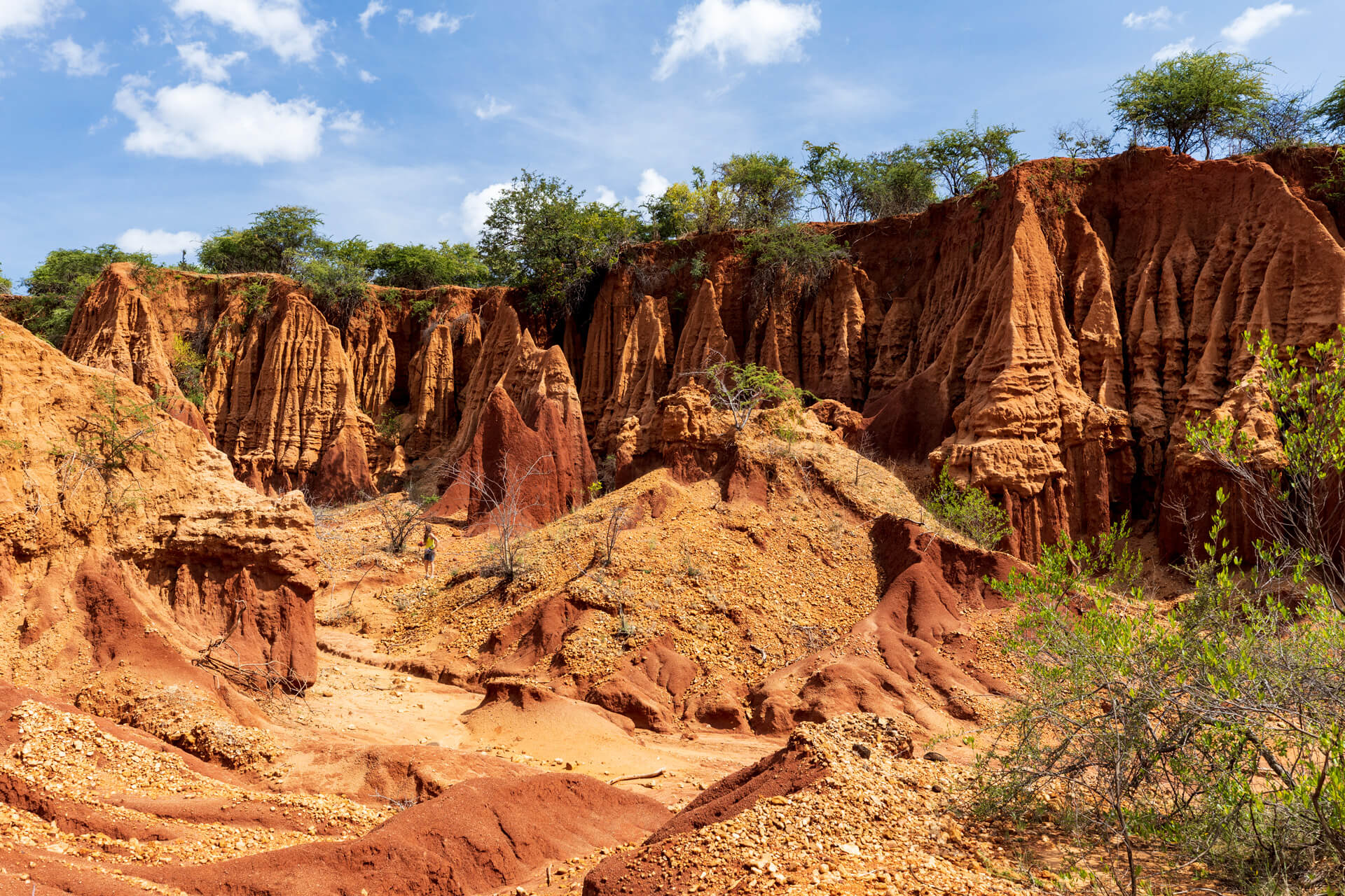 Ethiopia-trip-adventure-nature-canyon-Yabelo-city-forest-wildlife