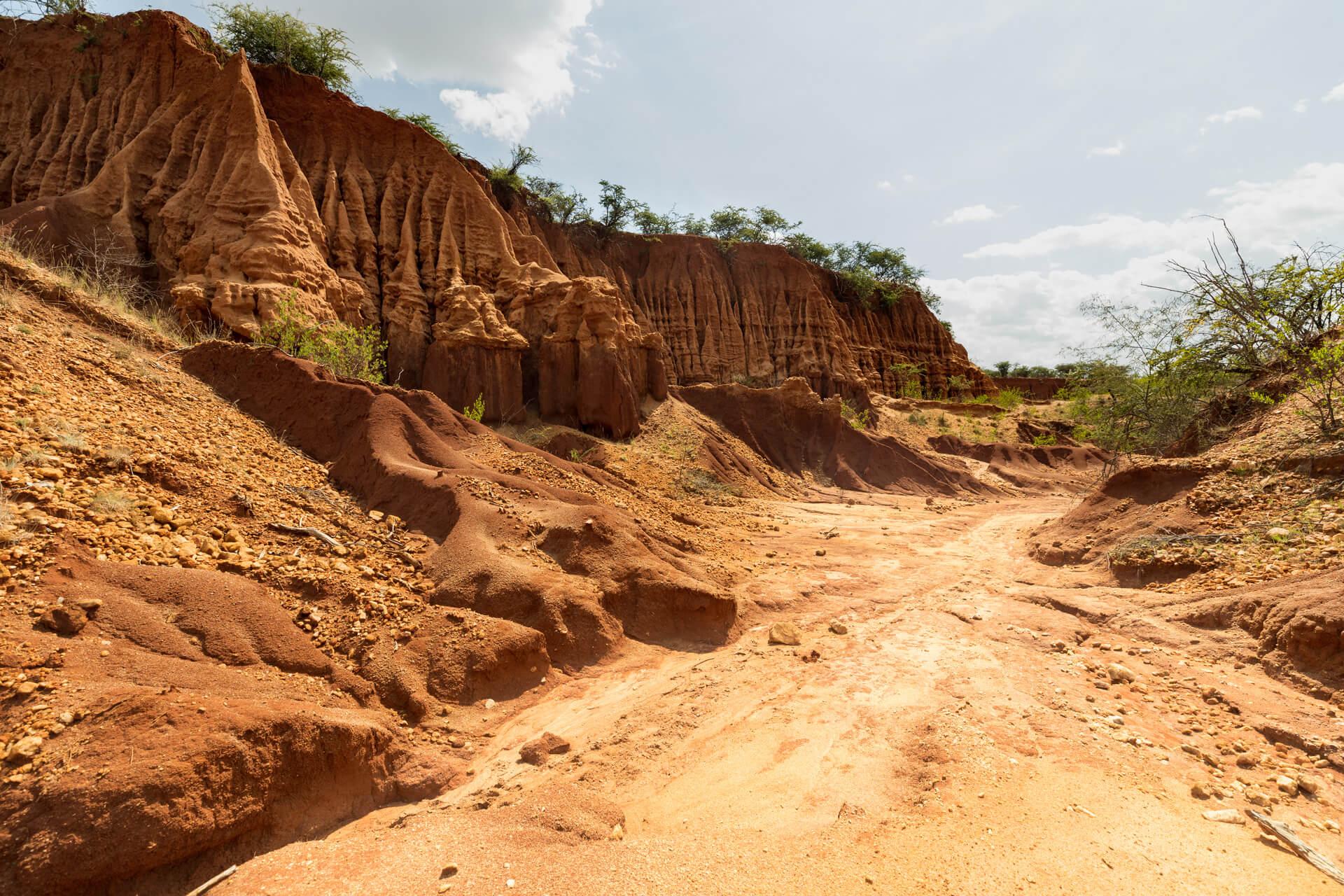 Ethiopia-traveling-Yabelo-can